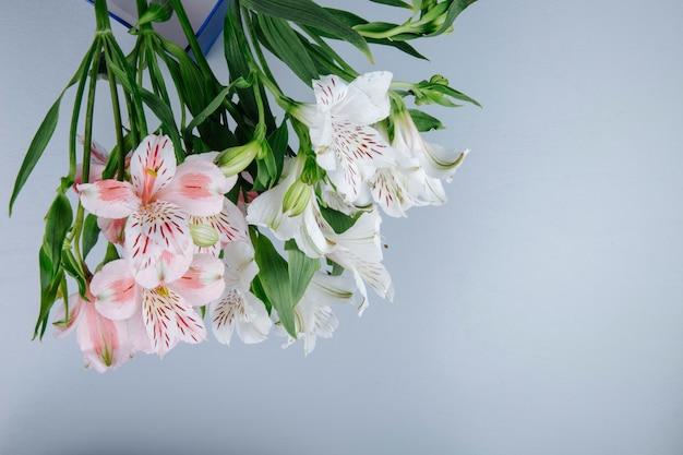 Vue latérale d'un bouquet de fleurs d'alstroemeria de couleur rose et blanc dans une boîte bleue sur fond gris clair