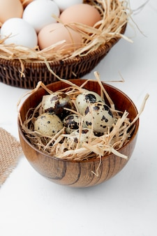 Vue latérale du bol plein d'oeufs dans le nid sur fond blanc