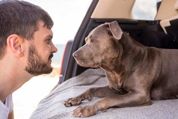 Vue latérale du chien regardant son propriétaire