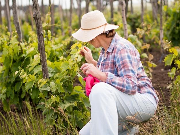 Vue latérale femme regardant son jardin