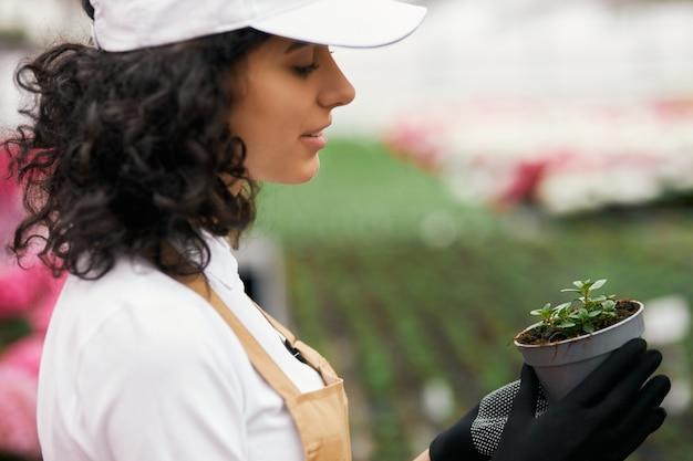 Vue latérale d'une jardinière tenant un pot avec une plante verte