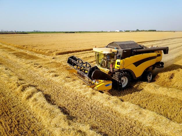 Vue latérale de la moissonneuse-batteuse tout en travaillant dans le champ de blé par une journée ensoleillée.