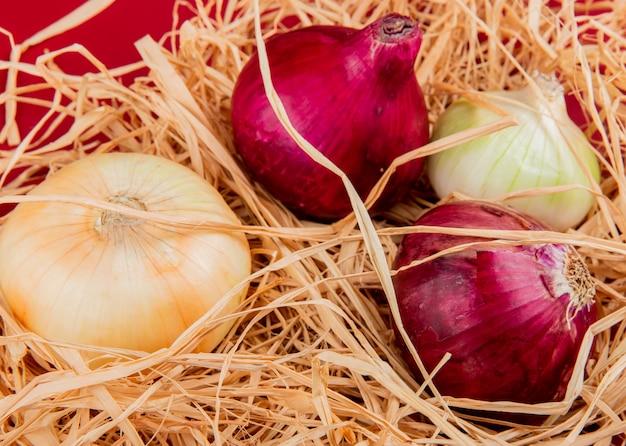 Vue latérale des oignons doux, rouges et blancs sur paille et table rouge