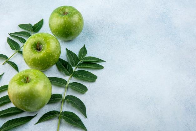 Vue latérale des pommes vertes avec des branches de feuilles