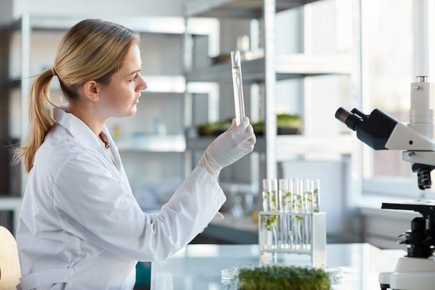 Vue latérale portrait of young female scientist holding tube à essai avec des échantillons de plantes tout en travaillant sur la recherche en laboratoire de biotechnologie, copy space
