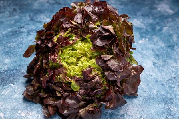 Vue de légumes verts frais
