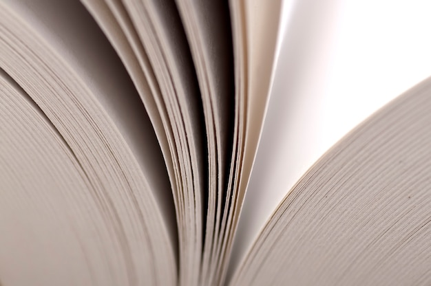 Vue macro des pages du livre. le concept d'éducation