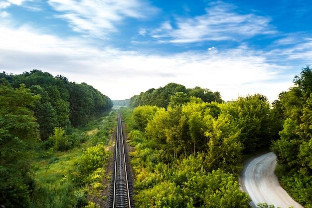 Vue magnifique sur le chemin de fer et la route de campagne au milieu des arbres.