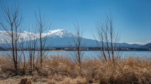 Une vue magnifique sur le mont fuji