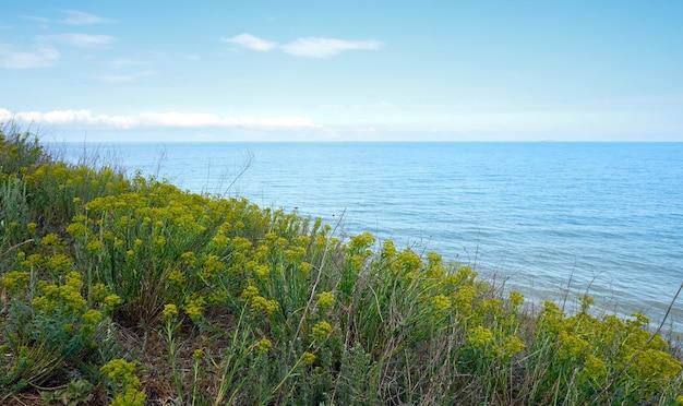 Vue sur la mer depuis une colline envahie par l'herbe verte avec des nuages à l'horizon
