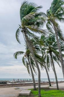 Vue sur la mer de phuket