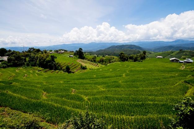Vue sur la montagne au sommet de la montagne à ban pa pong piengin thaïlande