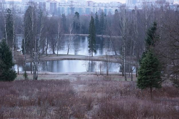 Vue de la montagne aux lacs dans le parc triste automne, couleurs ternes et ciel gris.