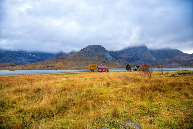 Vue sur la montagne dans les îles lofoten au jour de pluie