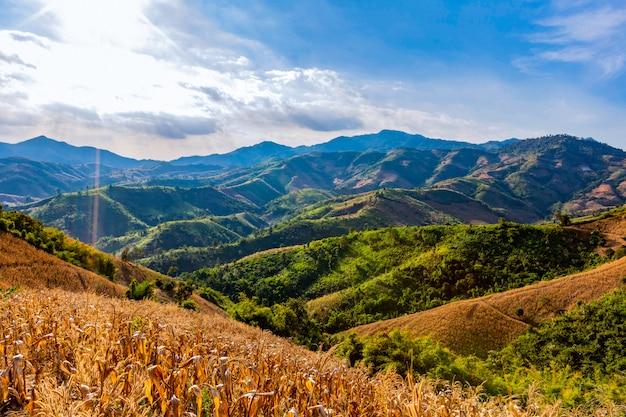 Vue sur la montagne dans la région de la province de nan, thaïlande