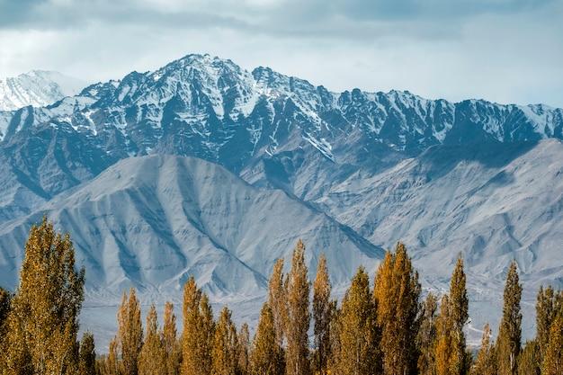 Vue de montagne enneigée du district de leh ladakh, partie nord de l'inde