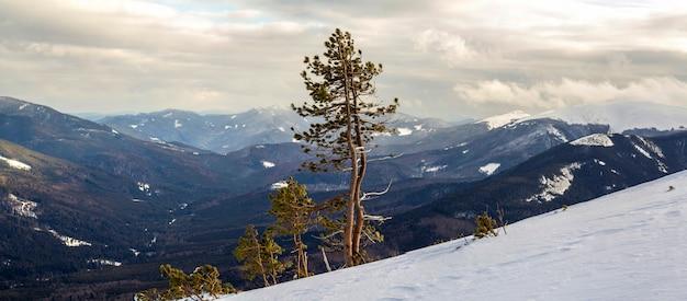 Vue sur la montagne en hiver dans les carpates avec nuage dramatique