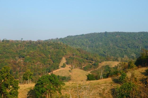 Vue sur la montagne de khao phaengma zone non chassee thaïlande