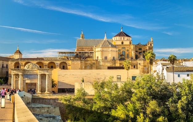 Vue de la mosquée-cathédrale de cordoue - espagne, andalousie
