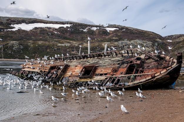 Vue d'un navire abandonné au bord de la mer au-delà du cercle polaire arctique