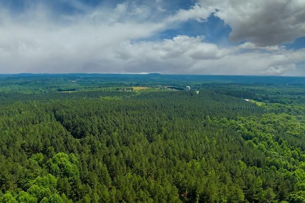 Vue panoramique aérienne sur la forêt verte dans la nature estivale entre les montagnes de la ville de campobello