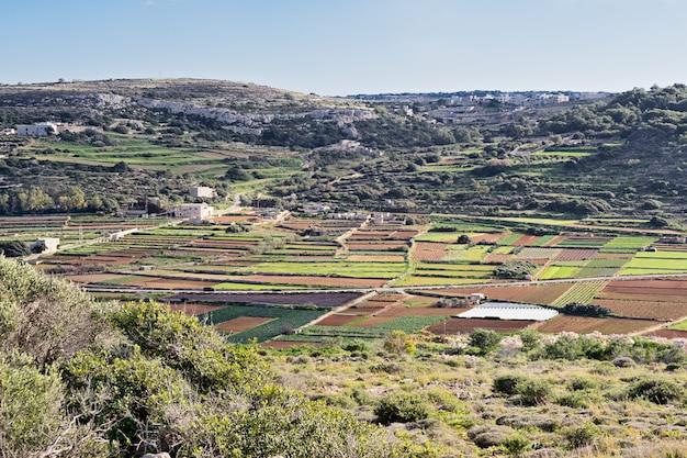 Vue panoramique sur les champs d'hiver typiques de malte