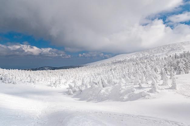 Vue panoramique du monstre des neiges sur le mont zao