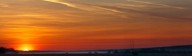 Vue panoramique du soleil levant sur une prairie brumeuse