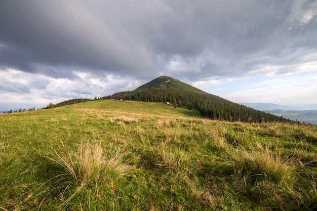 Vue panoramique de l'été, vallée herbeuse verte sur fond de montagnes boisées lointaines sous ciel nuageux.