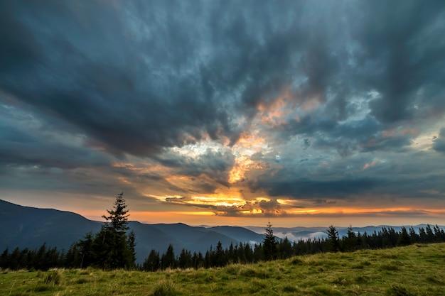 Vue panoramique d'été, vallée herbeuse verte sur des montagnes ligneuses lointaines sous un ciel nuageux.