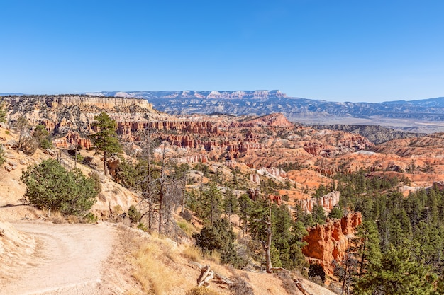 Vue panoramique d'étonnantes formations de grès hoodoos dans le pittoresque parc national de bryce canyon sur une journée ensoleillée. utah, états-unis