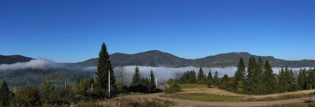 Vue panoramique sur les forêts brumeuses des montagnes des carpates tôt le matin