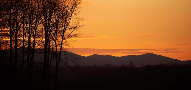 Vue panoramique de l'heure d'or dans un bel endroit paisible