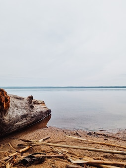 Vue panoramique sur un lac dans une forêt aux eaux calmes par temps nuageux.