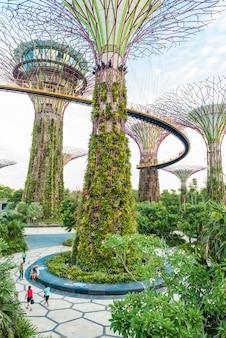 Vue panoramique de la magnifique illumination de garden by the bay