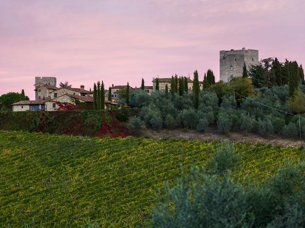 Vue panoramique de maisons dans un village avec vignoble, toscane, italie