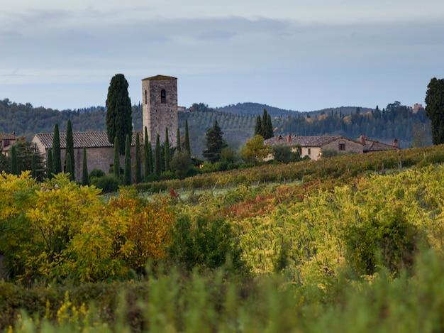 Vue panoramique, de, maisons, dans, village, à, vignobles, toscane, italie