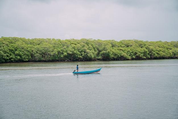 Vue panoramique sur la mer du paysage de marais de mangrove tranquille sur la côte de bahia, brésil