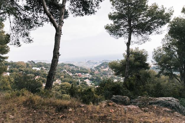 Vue panoramique sur la montagne et les maisons