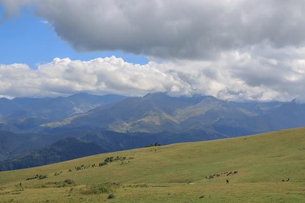 Vue panoramique sur les montagnes et les vallées dans le parc national dombay, caucase, russie, europe. ciel bleu dramatique et paysage d'été ensoleillé