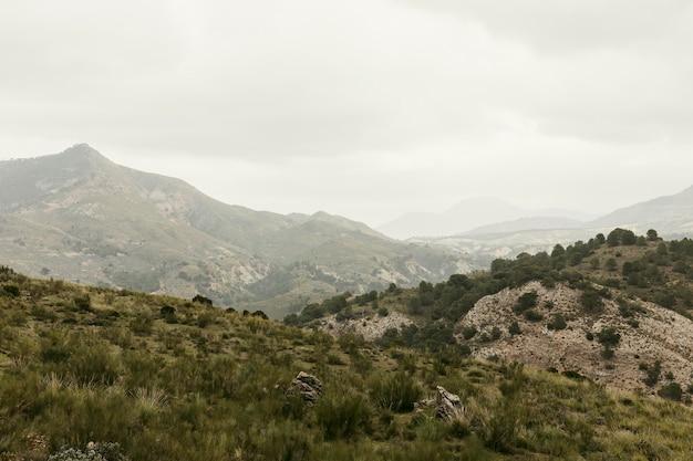 Vue panoramique sur la nature