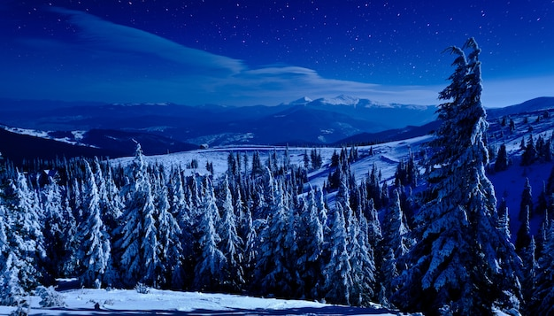 Vue panoramique de nuit sur la forêt profonde d'hiver sur les collines couvertes de neige