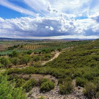Vue panoramique sur l'oliveraie avec route et nuages d'orage.