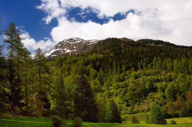 Vue panoramique sur le parc national suisse avec une route le jour de printemps ensoleillé.