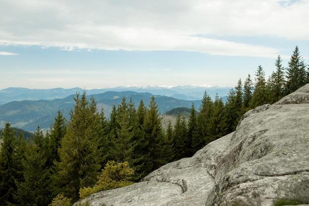 Vue panoramique sur le paysage pittoresque des carpates