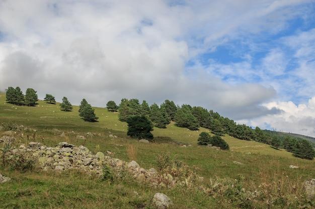 Vue panoramique sur les scènes de forêt et de montagnes dans le parc national dombay, caucase, russie. ciel bleu dramatique et paysage ensoleillé