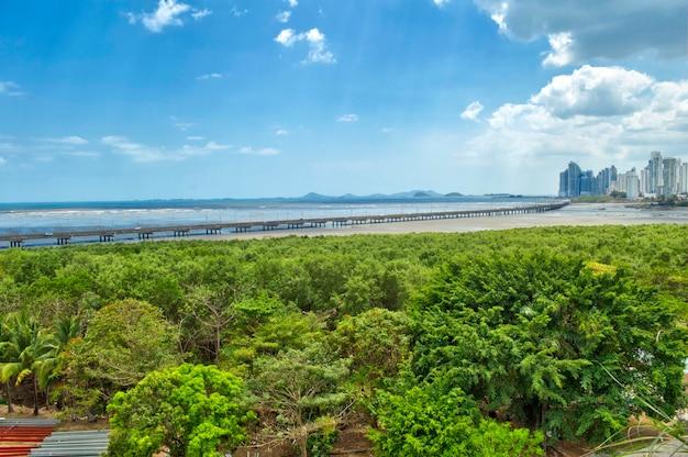 Vue panoramique sur les toits modernes de la ville de panama
