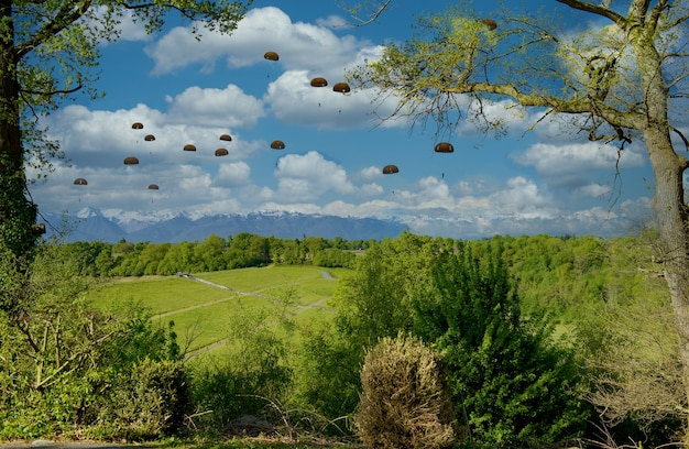 Vue des parachutistes militaires en l'air