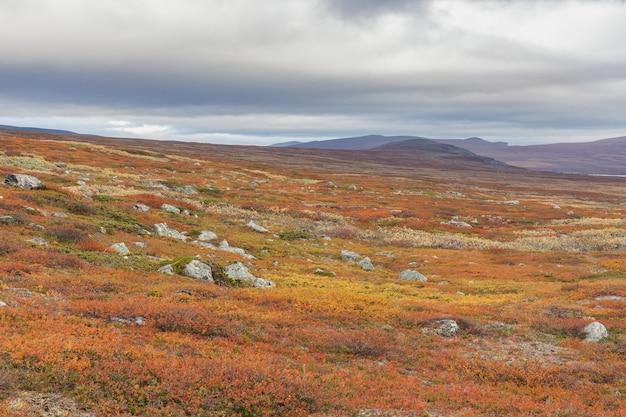 Vue sur le parc national de sarek en automne, suède