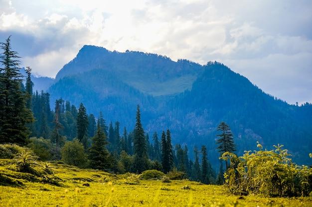 Vue paysage sur les champs et les montagnes de manali en inde
